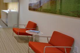 Irvine Company Offices, Los Angeles (USA), VALERI Lounge chair